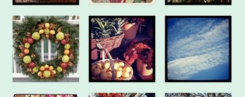 I've Joined Instagram! Joanna Baker Illustration