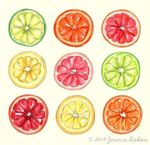 Summer Citrus Illustration by Joanna Baker