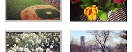 Spring Instagram Joanna Baker Illustration