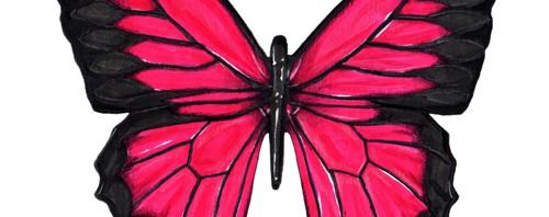 Pink Butterfly Illustration by Joanna Baker