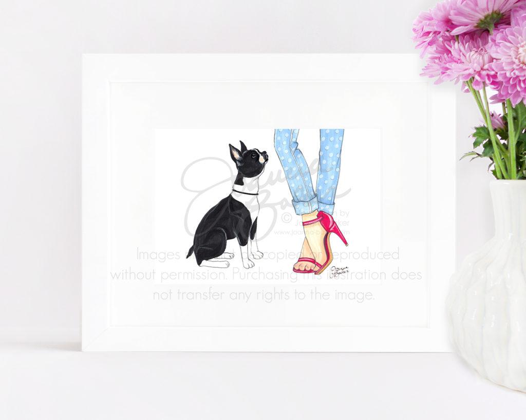 Boston Terrier Illustration by Joanna Baker