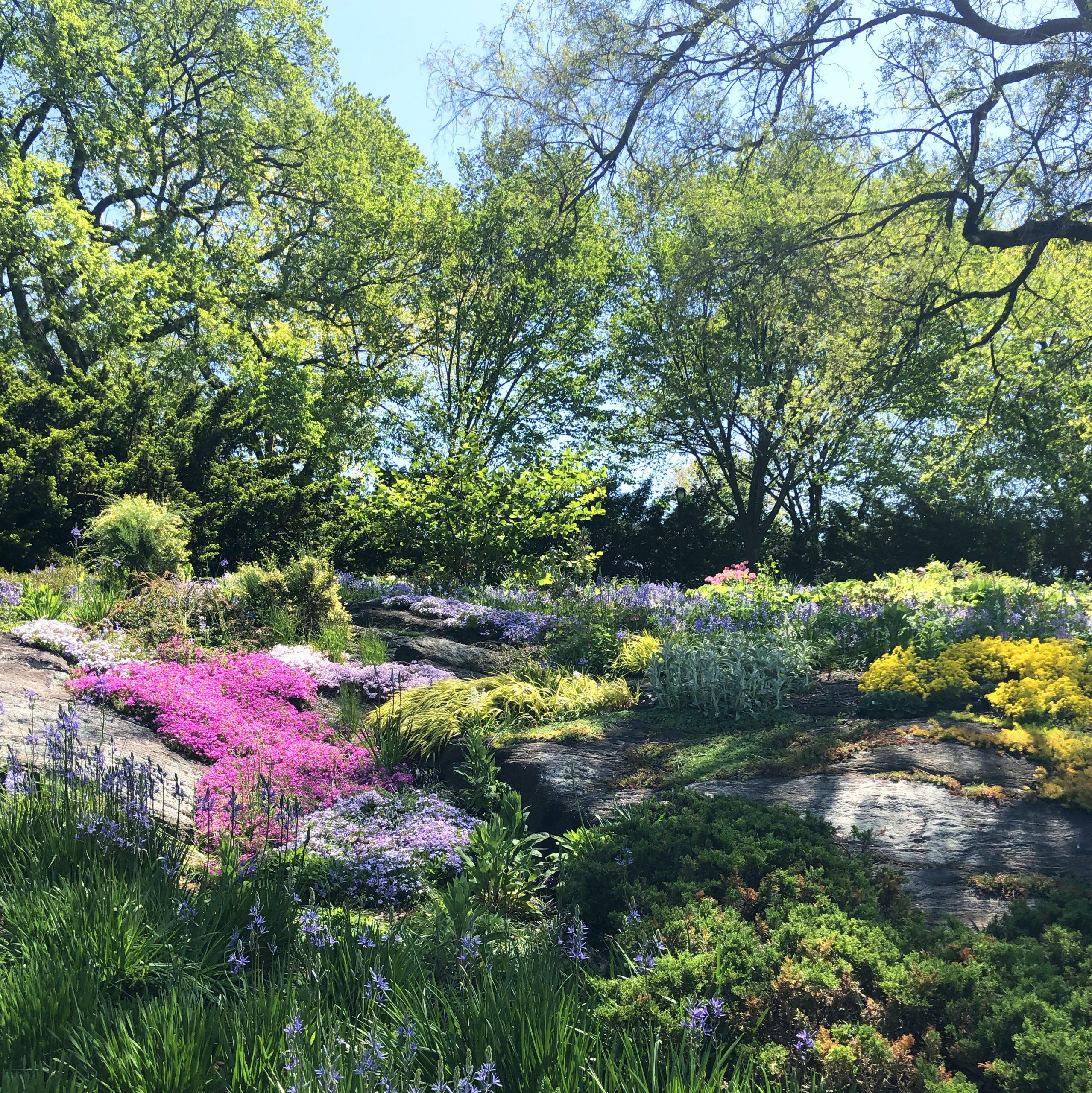 Into the Garden by Joanna Baker