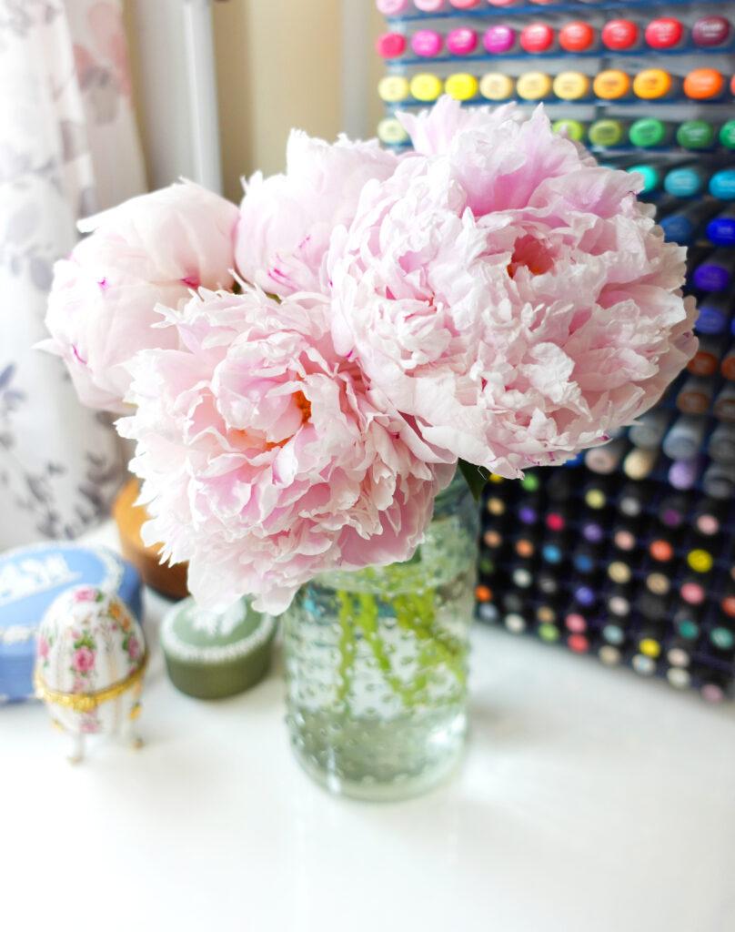 Fresh Pink Peonies in My Studio - Joanna Baker Illustration